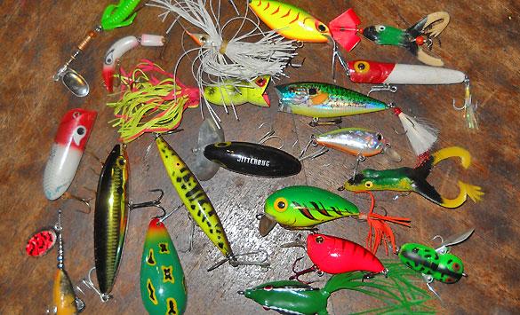 La tararira pescador deportivo for Proyecto de criadero de mojarras