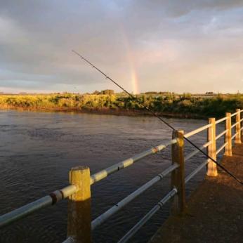 Pesca 19