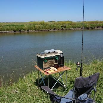 Pesca 20