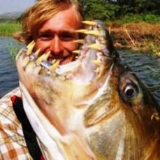 Pez Tigre Goliat Goliath Tiger Fish 1
