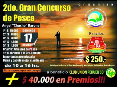 Concurso Pehuen Co