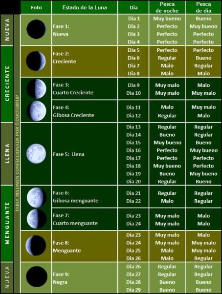 Fases de la luna y pesca
