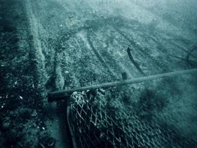 El impacto de la pesca de arrastre va mas allá de matar miles de especies de peces, sino que también aves, el fondo mismo, y todo lo que esta a su paso sufre un impacto desbastador.