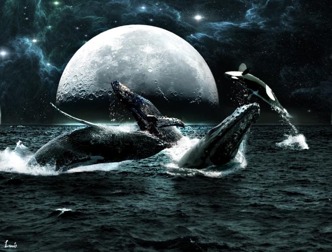 Muchas cosas perderán sentido si pierden vida las aguas. Y nosotros quedaremos mas que solos...