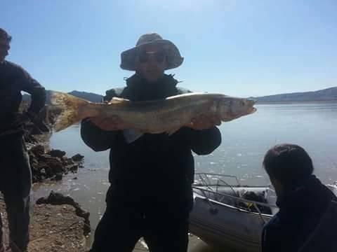 Pejerrey de 4,750 pescado en Dique Cuesta del Viento, San Juan, Argentina en mayo de 2015