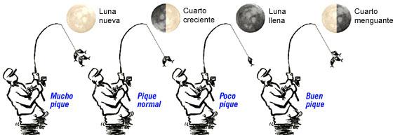 Luna y pesca