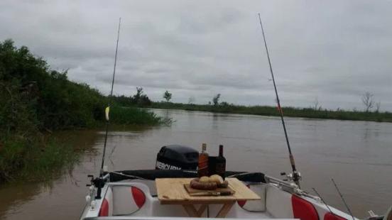 Picada Embarcado