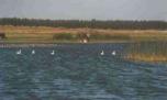 Laguna Tupungato