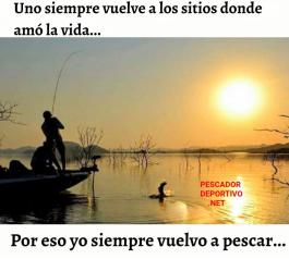Meme Pesca 19