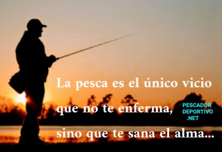 Meme Pesca 36