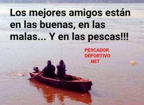 Meme Pesca 41