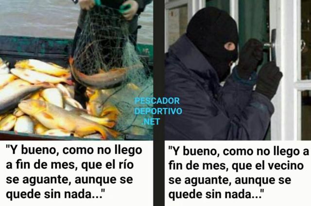 Meme Pesca 6