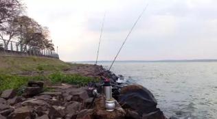 Pesca Mate 1
