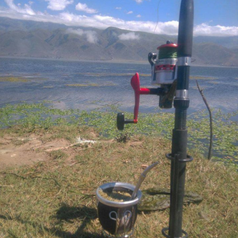 Pesca Mate 17
