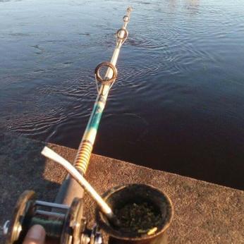 Pesca Mate 18