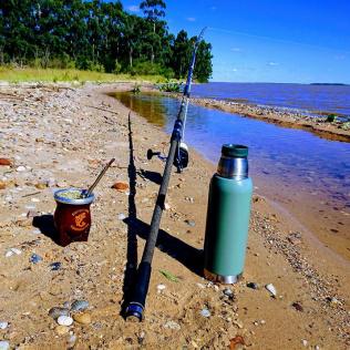 Pesca Mate 8