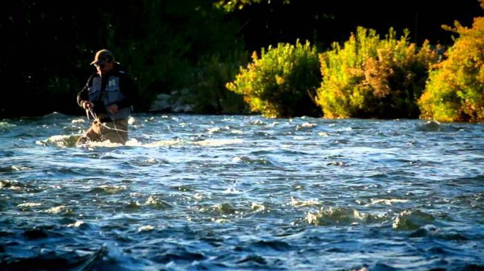 Pesca Mosca.jpg