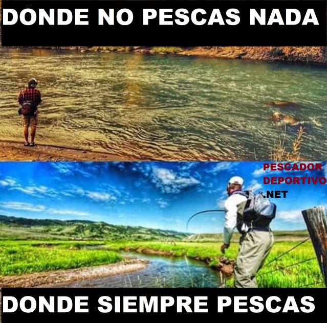 DONDE NO PESCAS Y DONDE SI