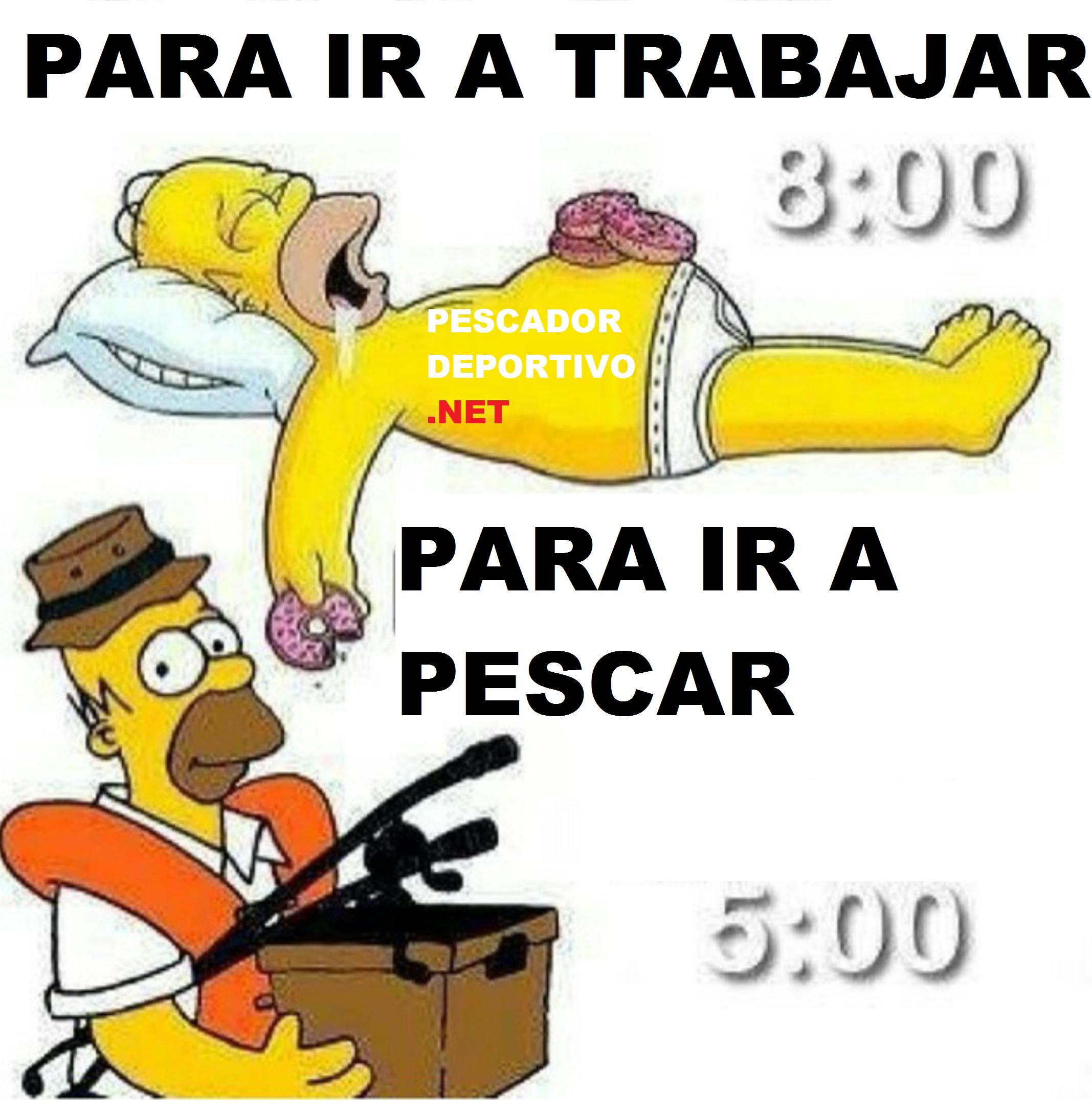 DORMIR PESCA HOMERO
