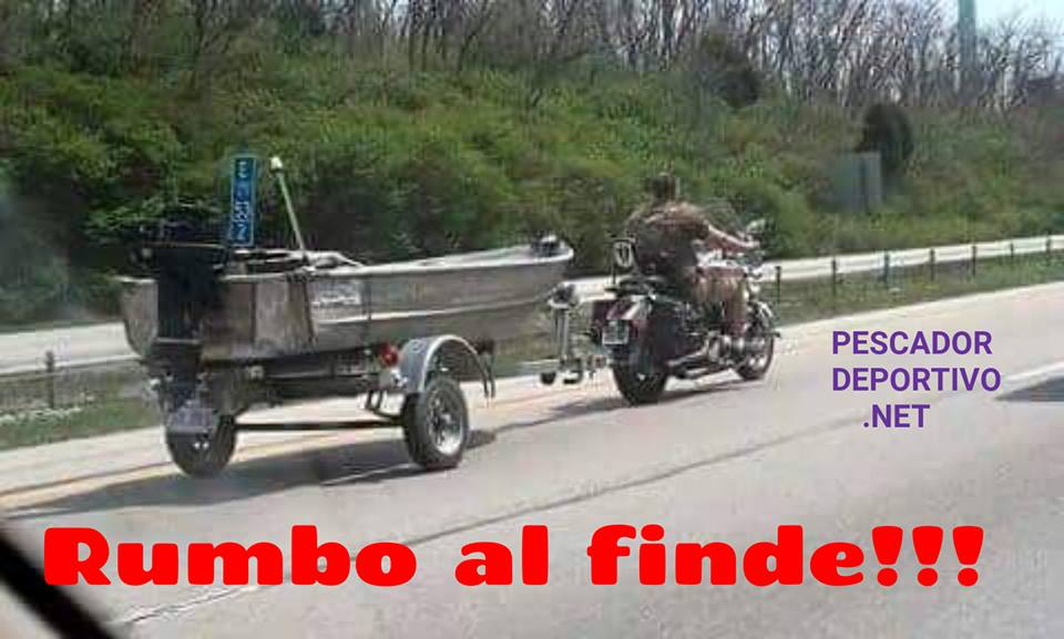 Meme Pesca 15