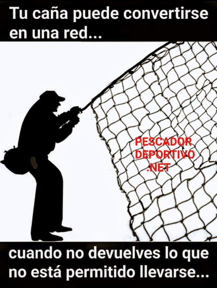 Meme Pesca 3