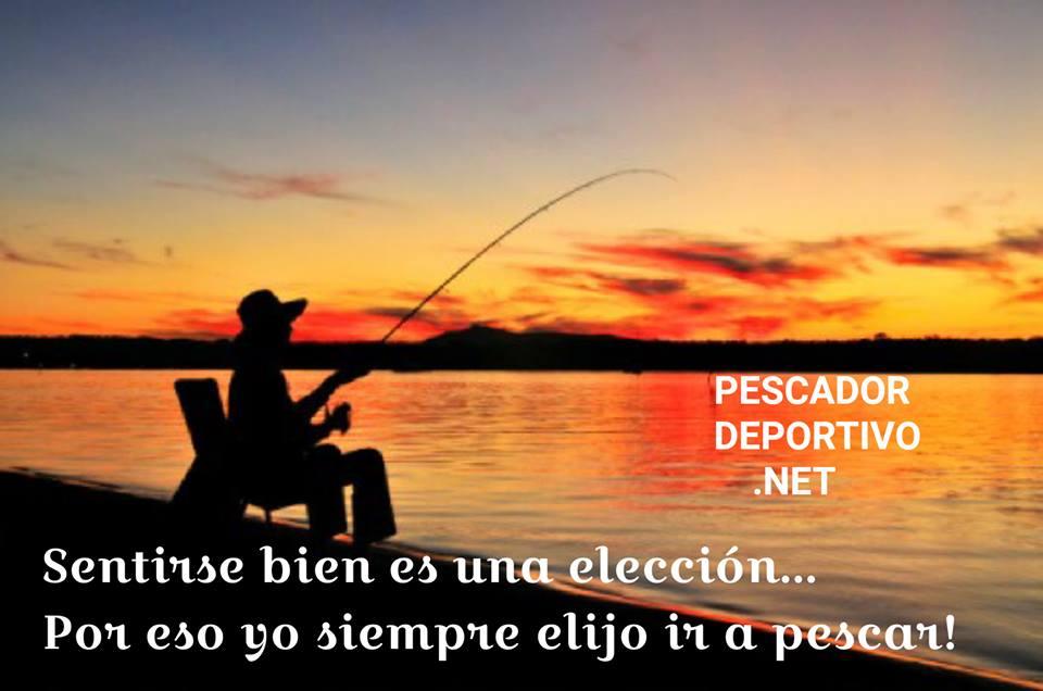 Meme Pesca 63