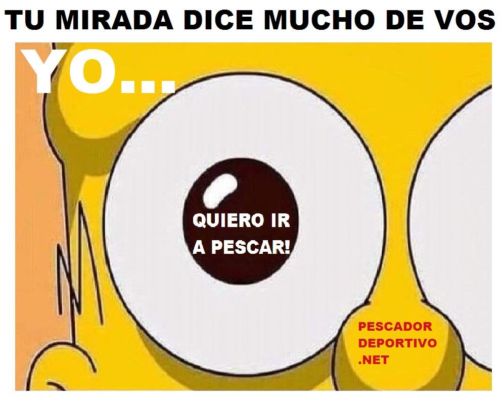 MIRADA DICE