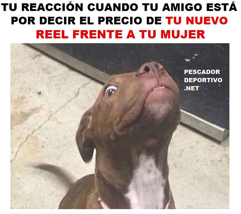 PRECIO REEL