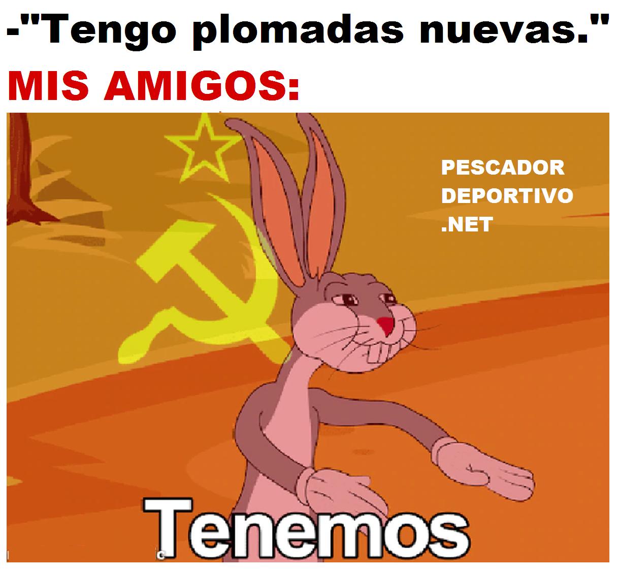 TENEMOS PLOMADAS