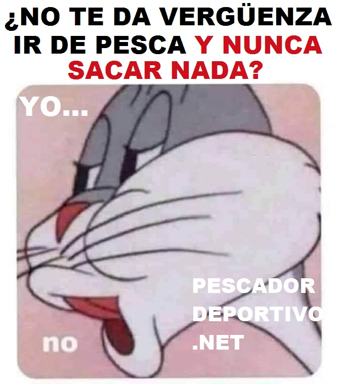 VERGUENZA NO PESCAR