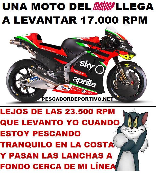 moto gp6226282282554302206..png
