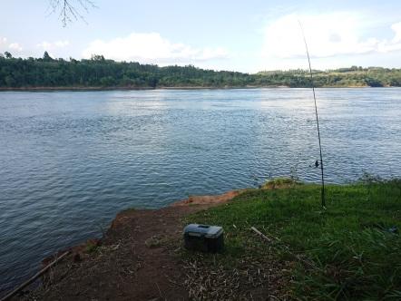 Pesca 29